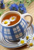 Cup of herbal tea. Chamomile and flowers Stock Photos