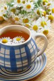 Cup of herbal tea. Chamomile and flowers Royalty Free Stock Photos