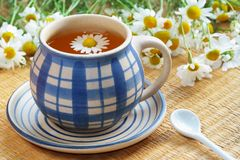 Cup of herbal tea. Chamomile and flowers Royalty Free Stock Photo