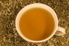 The cup of herbal tea Stock Photography