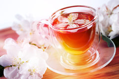 Cup of herbal tea with apple flowers on a wooden Royalty Free Stock Images
