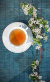 Cup of herbal tea, artistic Stock Images