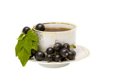 Cup of herbal tea and black curran Royalty Free Stock Photography