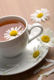 Cup of herbal tea and camomile flowers Stock Images