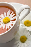 Cup of herbal tea and camomile flowers Stock Photos