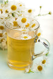 Cup of herbal tea with chamomile Royalty Free Stock Photo