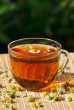 Cup of herbal tea and chamomile Royalty Free Stock Photos