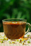 Cup of herbal tea and chamomile Royalty Free Stock Image