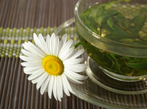 Cup of herbal tea and chamomile Stock Images