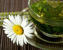 Cup of herbal tea and chamomile Royalty Free Stock Photo
