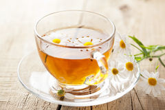 Cup of herbal tea with chamomile flowers Stock Image