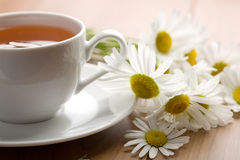 Cup of herbal tea and chamomile flowers Stock Photography