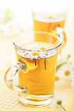 Cup of herbal tea with camomile flowers Royalty Free Stock Image