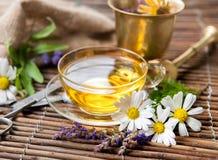 Cup of herbal tea royalty free stock image