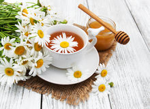 Cup of herbal tea with chamomile flowers Stock Photography