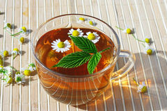 Cup of herbal tea with chamomile and green leaf Stock Image