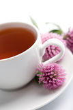 Cup of herbal tea and clover flowers Royalty Free Stock Image
