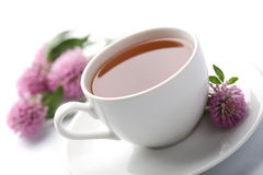 Cup of herbal tea and clover flowers isolated. White cup of herbal tea and clover flowers isolated royalty free stock photos