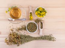 Herbal tea with St. John`s wort. Cup of herbal tea with dried and fresh St. John`s wort on a wooden background Royalty Free Stock Photo
