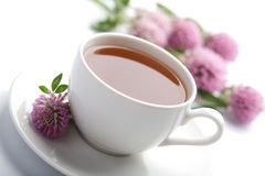 Cup of herbal tea and flowers isolated Stock Images