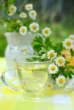 Cup of chamomile tea. A cup of herbal tea and  flowers in the outdoors royalty free stock photos