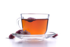 Cup of herbal tea with flowers on white Royalty Free Stock Images