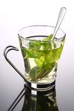 Cup of herbal tea with fresh mint Royalty Free Stock Photo