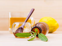 Cup of herbal tea with  fresh sage ,honey and lemon on wooden ba Royalty Free Stock Photos