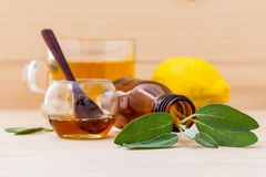 Cup of herbal tea with  fresh sage Royalty Free Stock Image