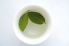 Cup of herbal tea. With green leaf Stock Photos