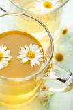 Cup of herbal tea with hcamomile Stock Photography