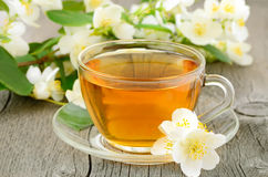 Cup of herbal tea with jasmine flowers Royalty Free Stock Image