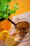 Cup of herbal tea and lemon Royalty Free Stock Photos