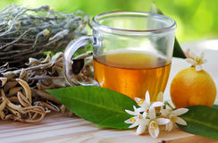 Cup of herbal tea and lemon Royalty Free Stock Photography