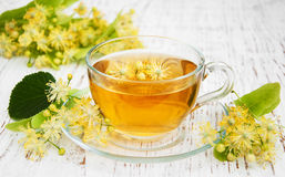 Cup of herbal tea with linden flowers Royalty Free Stock Image