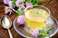 Healthy tea with clover. Cup of herbal tea made of wild clover.Tea concept Royalty Free Stock Photo