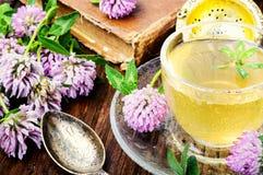 Summer herbal tea with clover. Cup of herbal tea made of wild clover.Herbal tea Stock Photos