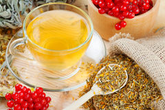 Cup of herbal tea and medicinal herbs. Cup of herbal tea, medicinal herbs and healthy berries on table Royalty Free Stock Photos