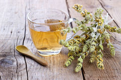 Cup of herbal tea Stock Photography