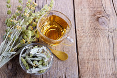 Cup of herbal tea. Mountain tea. Sideritis herbal tea and flowers on wooden background,selective focus royalty free stock images