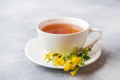 Cup with herbal tea from petals flowers Hypericum on grey background. Copy space.  stock photography