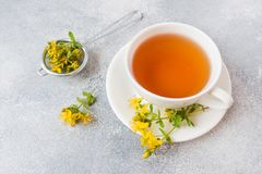 Cup with herbal tea from petals flowers Hypericum on grey background. Copy space.  stock photo