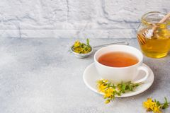 Cup with herbal tea from petals flowers Hypericum on grey background. Copy space.  stock image