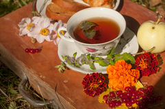 A cup of herbal tea, a plate of fresh pastry, yellow autumn leaves, ripe red currants and garden flowers on a wooden surface Royalty Free Stock Photo