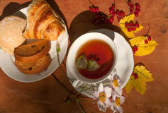 A cup of herbal tea, a plate of fresh pastry, yellow autumn leaves, ripe red currants and garden flowers on a wooden surface Stock Photos