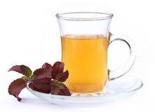 Cup of herbal tea with red tulsi leaves. Over white background Royalty Free Stock Photo