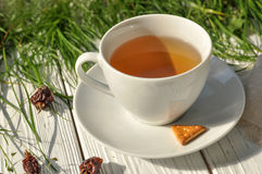 A cup of herbal tea, some crackers, a linen napkin and fresh green grass Stock Photo