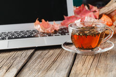 Cup of herbal tea on table with laptop Royalty Free Stock Images