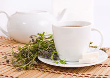 Cup of herbal tea and teapot Royalty Free Stock Photos