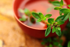 Cup of herbal tea with thyme. Outdoor Royalty Free Stock Photo